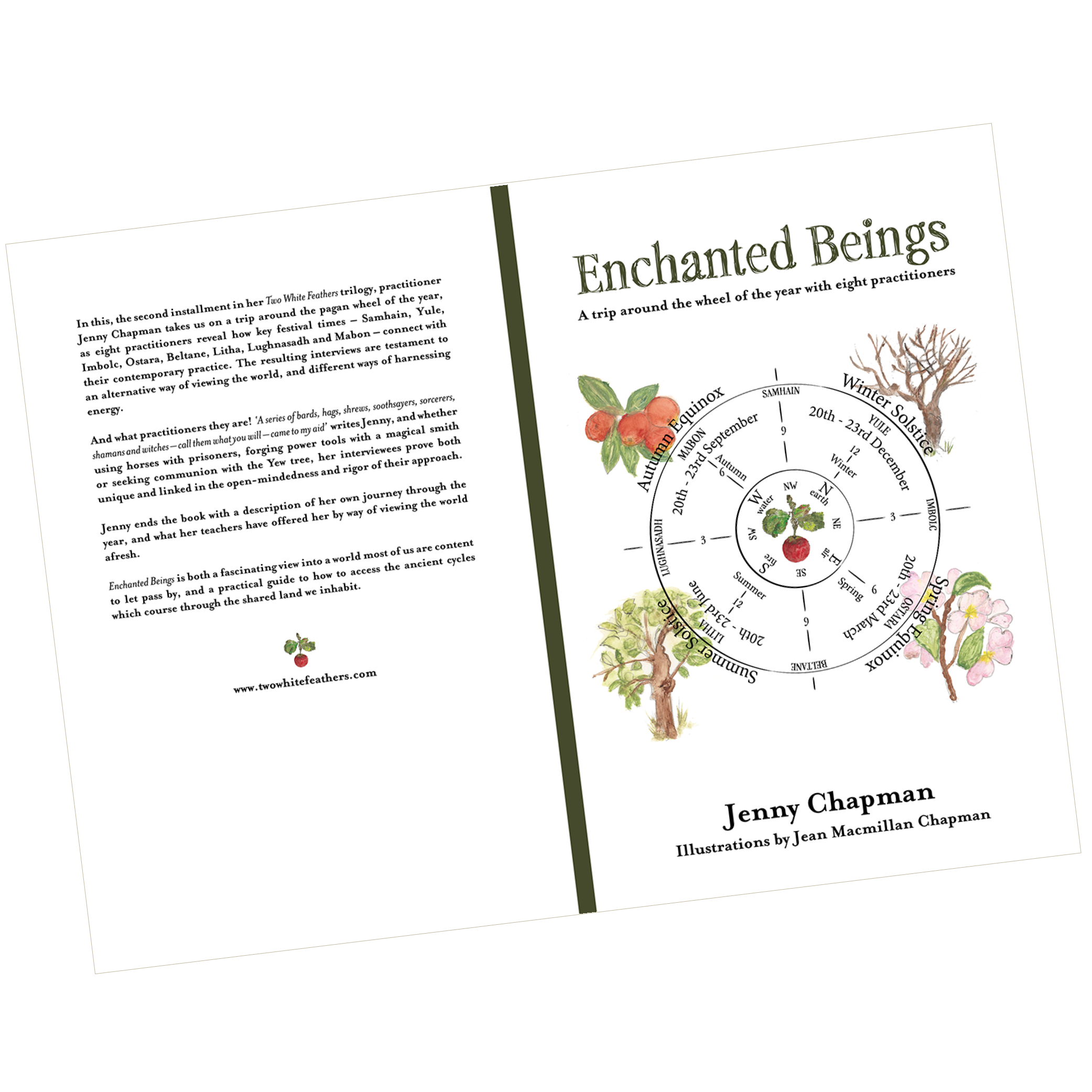 Enchanted Beings Book Cover